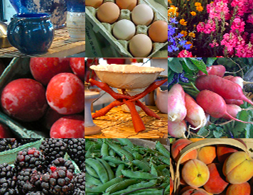 nashville farmers markets in davidson and williamson county